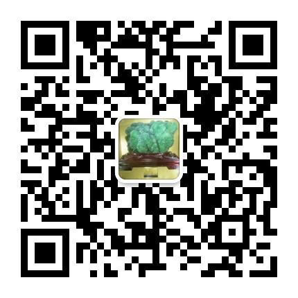 石英 改性 尾矿处理 培训班 2019